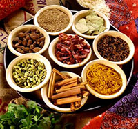Indian Spice